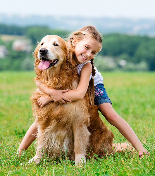 chica abrazando oro en el campo en verano
